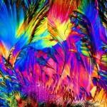A c vitamin egy még nagyobb nagyításban mikroszkóp alatt